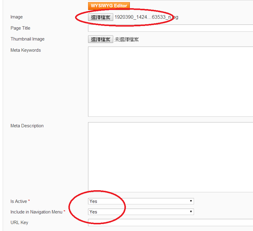 magento-website-add-menu05