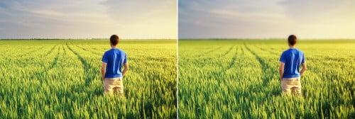 PhotoShop教學:【基礎篇】後製背景模糊的景深效果!